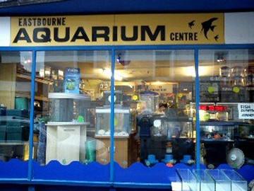 Reptile aquarium reptile tanks for sale for Aquarium shop
